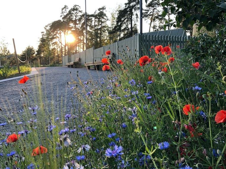 瑞典乌普萨拉的新区公园_15