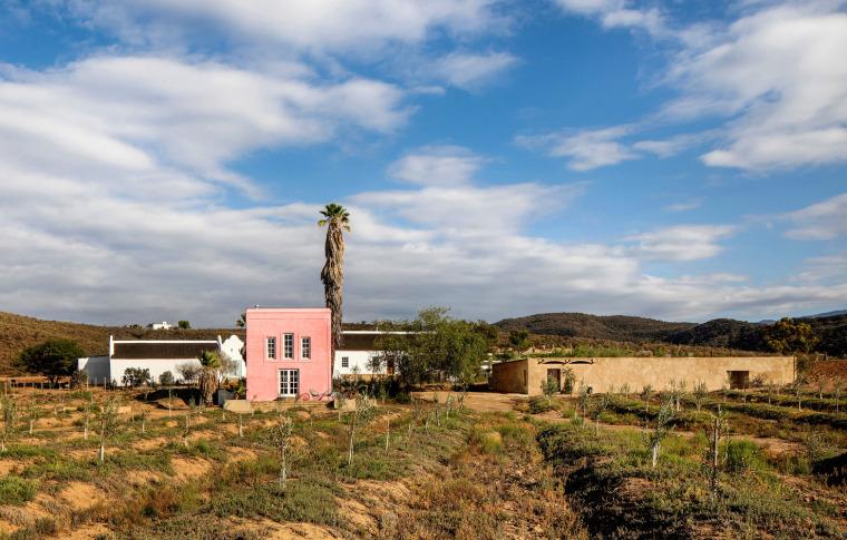南非cBuffelsdrift农场_3