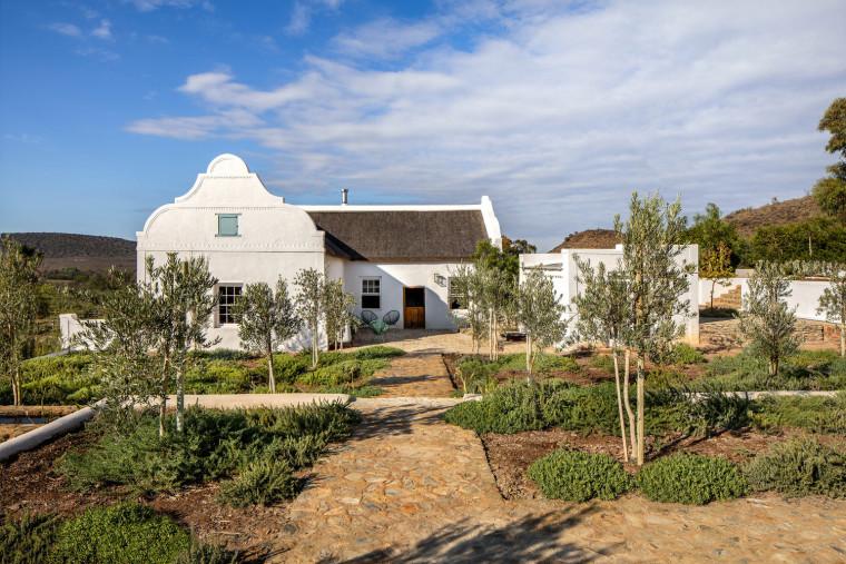 南非cBuffelsdrift农场_10