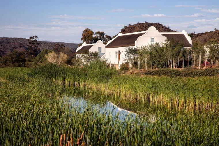南非cBuffelsdrift农场_6
