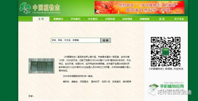 最全植物类查询专业网站丨植物类研究必备_2