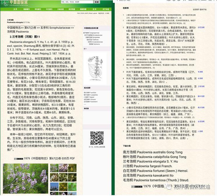 最全植物类查询专业网站丨植物类研究必备_3