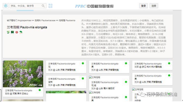 最全植物类查询专业网站丨植物类研究必备_7