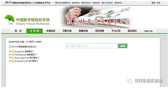 最全植物类查询专业网站丨植物类研究必备_13