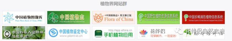 最全植物类查询专业网站丨植物类研究必备_19