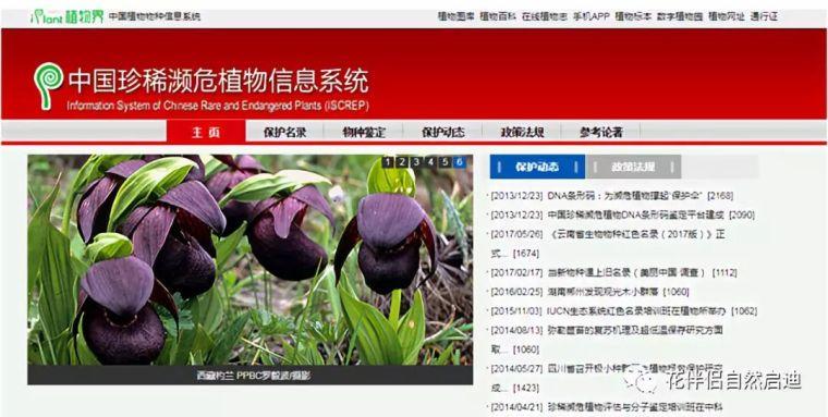 最全植物类查询专业网站丨植物类研究必备_20