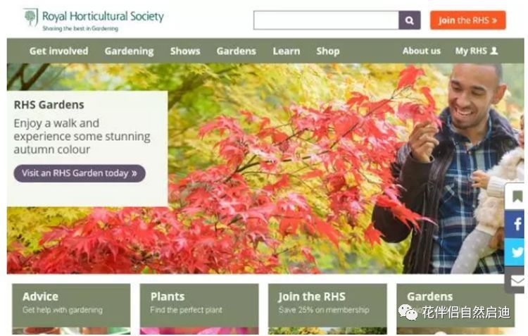 最全植物类查询专业网站丨植物类研究必备_22
