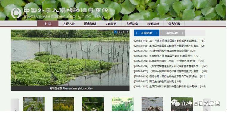 最全植物类查询专业网站丨植物类研究必备_21