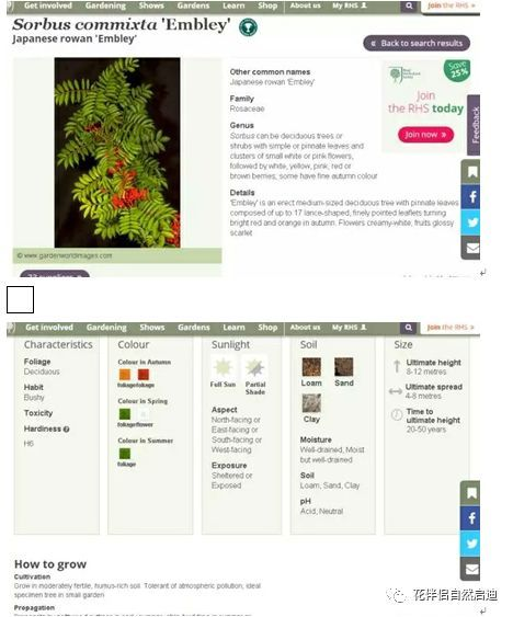 最全植物类查询专业网站丨植物类研究必备_24
