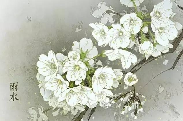 24节气·专属花卉植物,四季芳香!_2