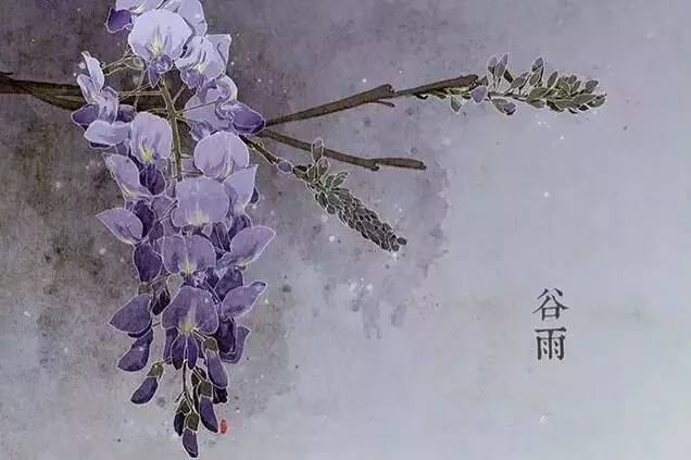 24节气·专属花卉植物,四季芳香!_6