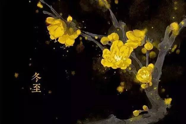 24节气·专属花卉植物,四季芳香!_22