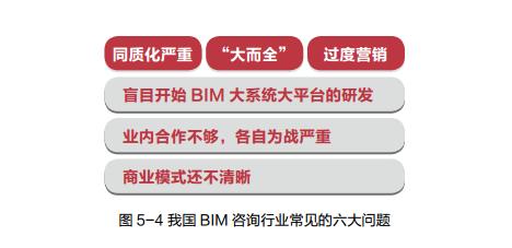 BIM咨询业界的几个问题_2