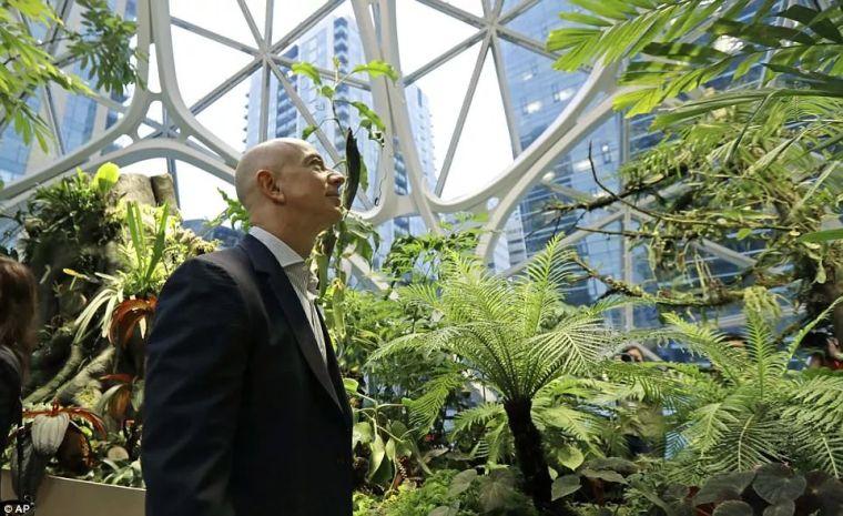亚马逊新总部大楼方案问世,巨吸睛!_2