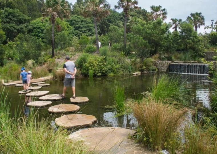 悉尼最大雨水收集项目,用途广泛_6
