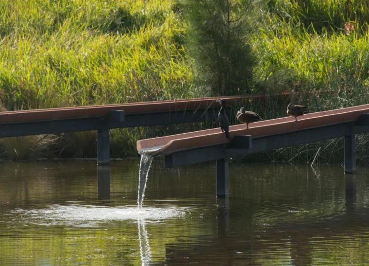 悉尼最大雨水收集项目,用途广泛_5