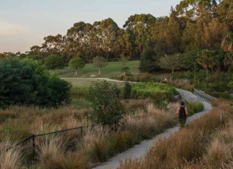 悉尼最大雨水收集项目,用途广泛_8