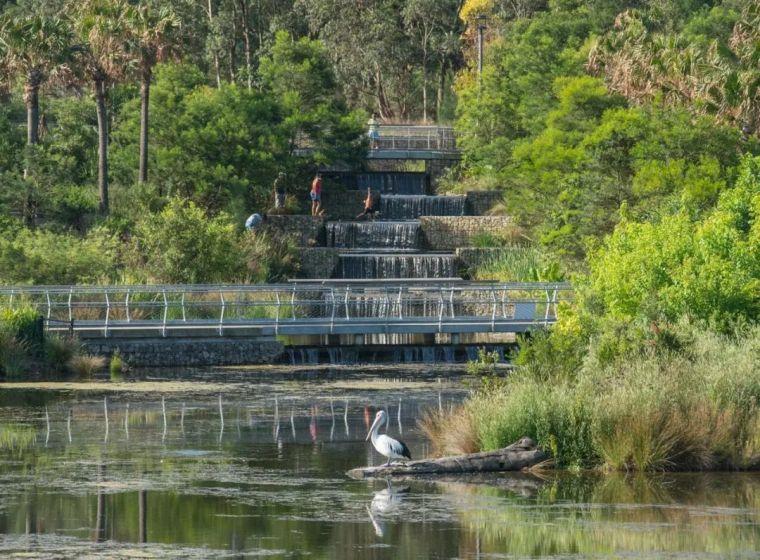 悉尼最大雨水收集项目,用途广泛_10