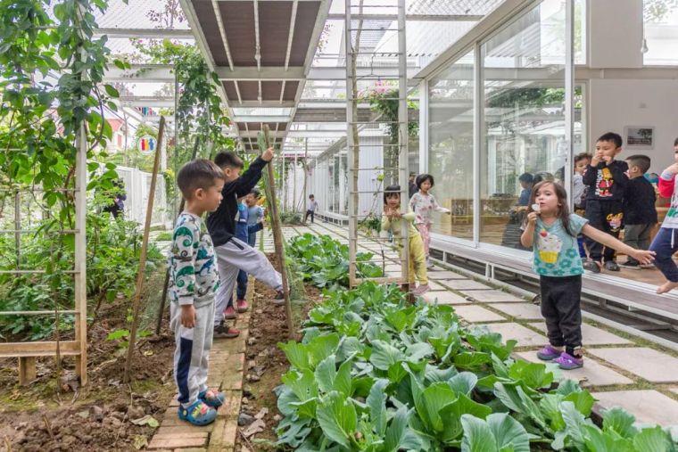 幼儿园似花园—越南蒙特梭利花园幼儿园_10