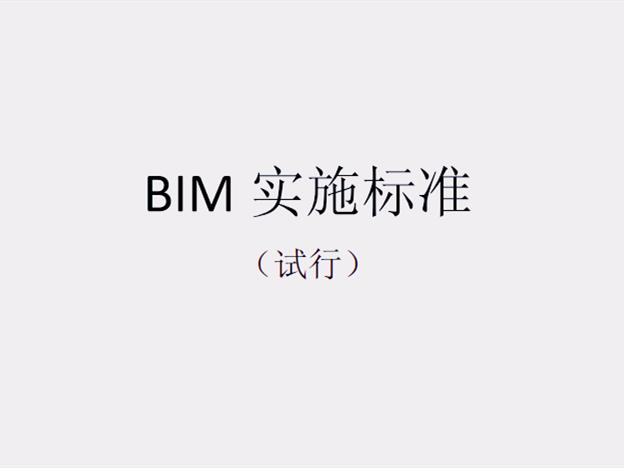 知名设计院_BIM实施标准(100页)_1
