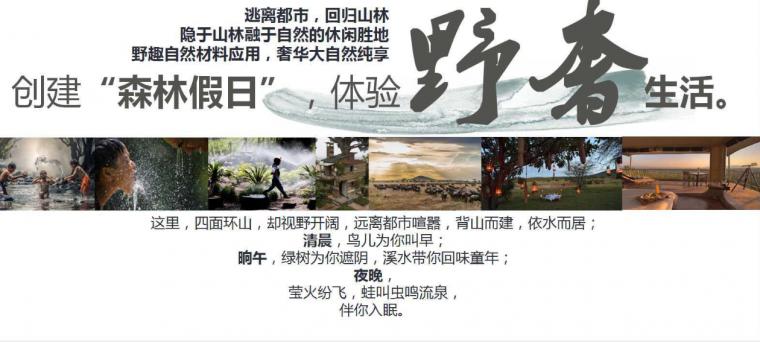 [陕西]凤汤天际温泉度假区规划设计方案_1