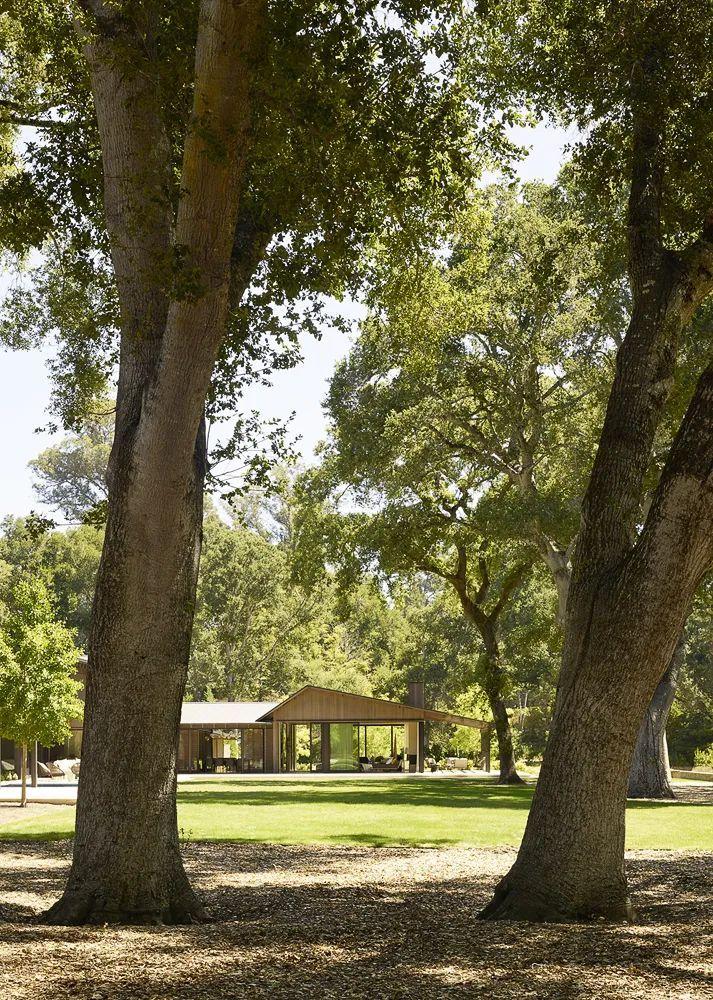 享受住宅乃至整个场地-橡树林住宅_28