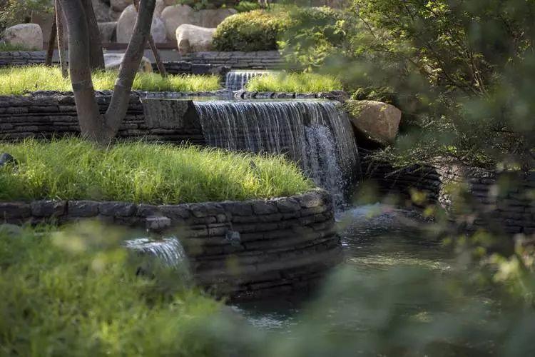 值得收藏的居住区景观植物配置方法!_1