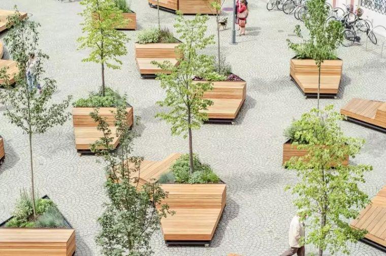 树阵景观的植物配置要点_24