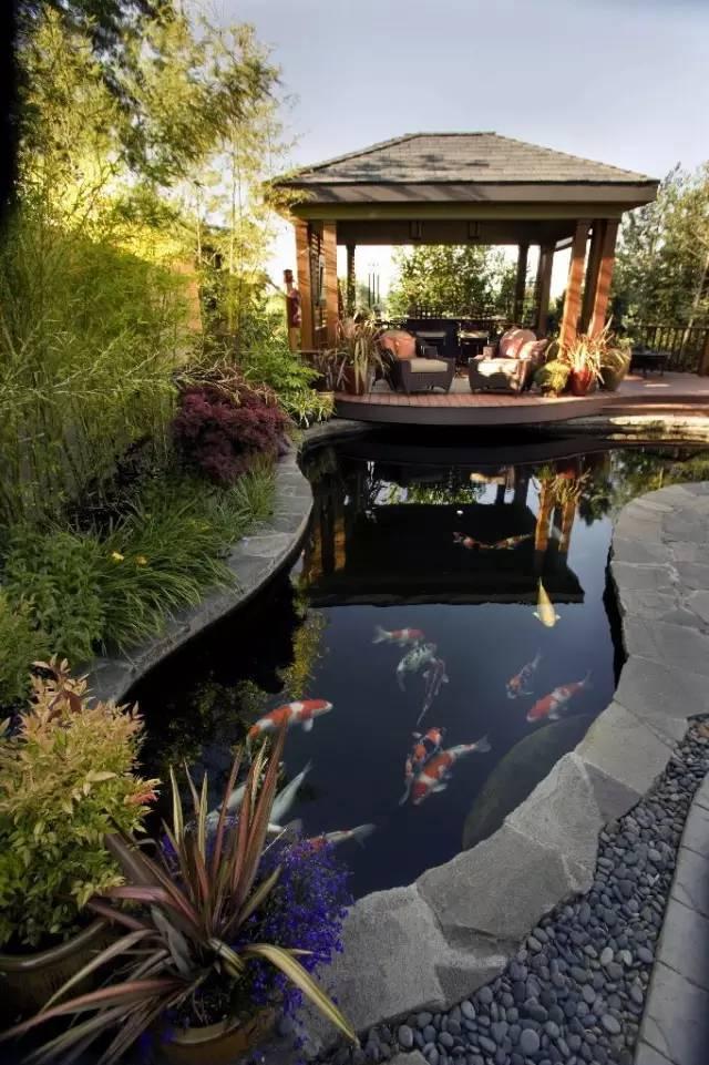 绝美庭院水景,太享受了!_13