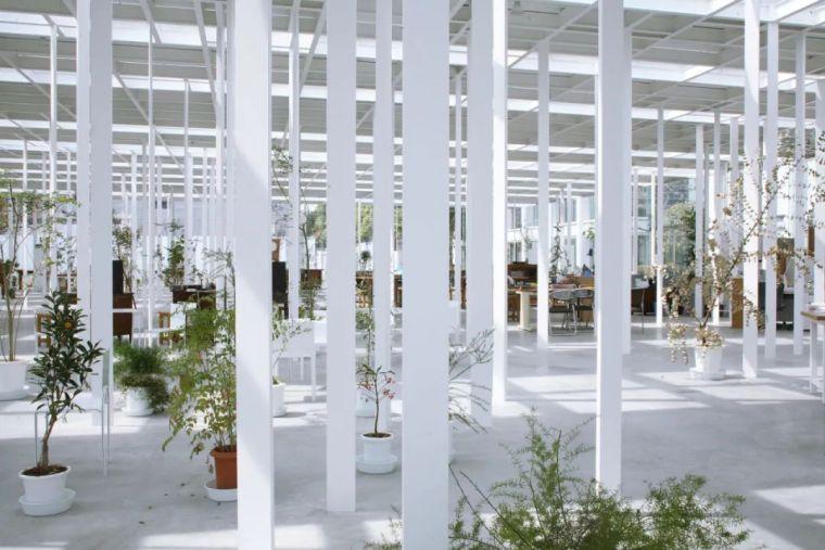 细柱的建筑表达和结构实现_25