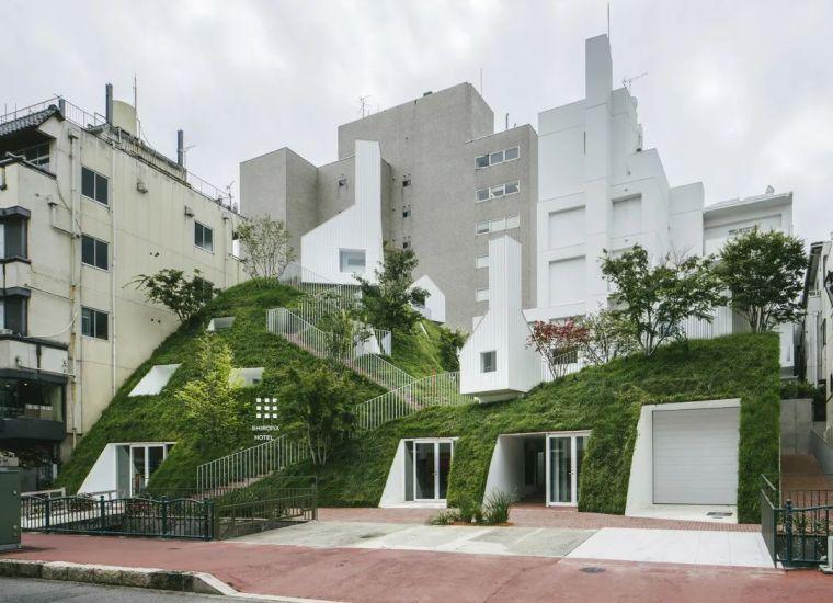 新作|起伏的绿色山丘-白井屋酒店_2