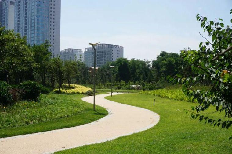 滨水景观设计,美出新高度!_30