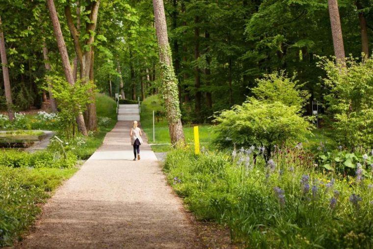 森林公园,灵感参考_17
