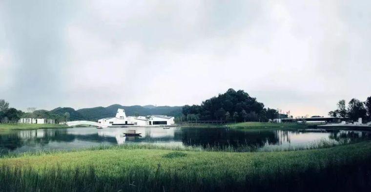 艺术点亮的乡村振兴_84