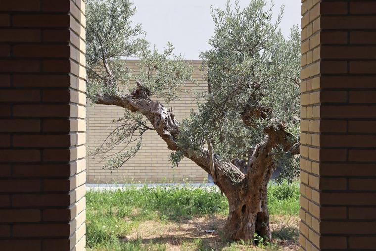 意大利Frisa公墓扩建与纪念性景观_8