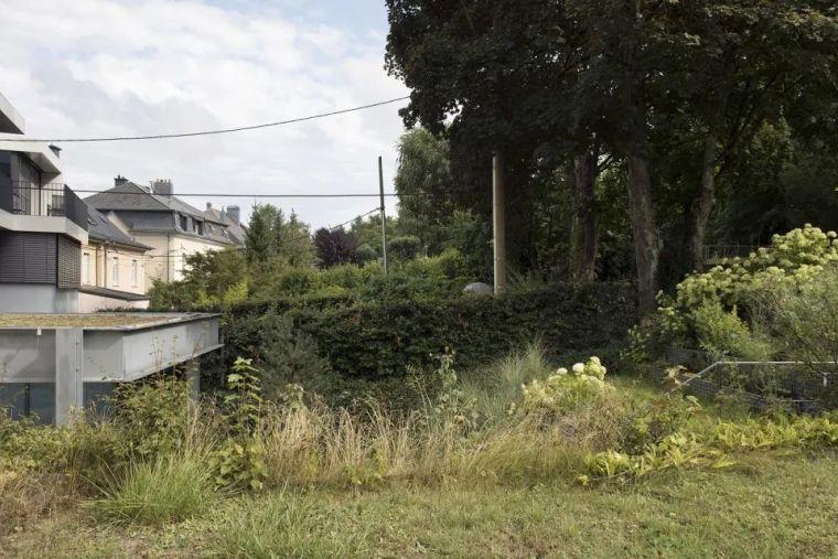 斜坡花园下的透明厨房-GALGEN住宅加建_17