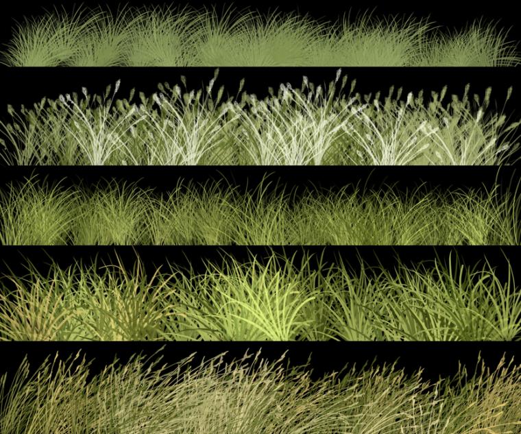 实用景观植物类笔刷合集-草类笔刷PSD_3