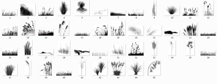 实用景观植物类笔刷合集-草类笔刷PSD_2
