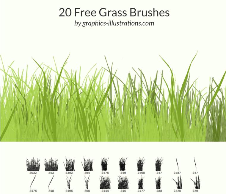 实用景观植物类笔刷合集-草类笔刷PSD_1