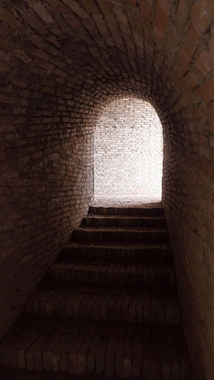 废墟书屋:连接窑洞与荒山_9