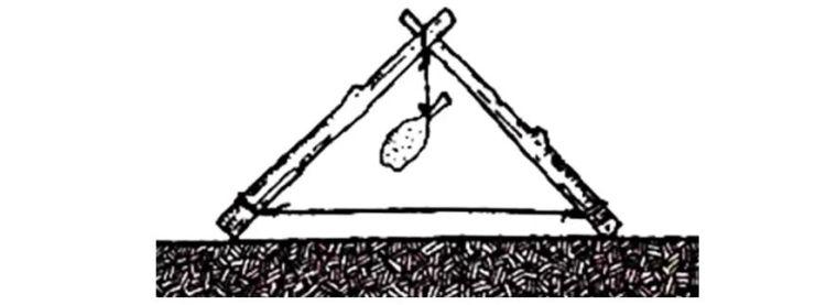 桁架与网架的参数化设计,超多实例!_2