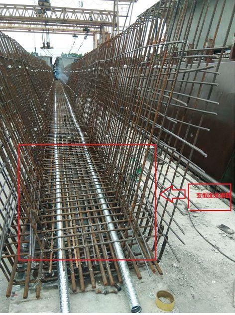 Revit在桥梁变截面处钢筋的运用_1