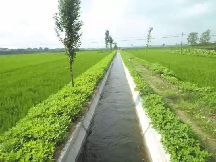 农田水利工程质量监督管理问题及措施_4