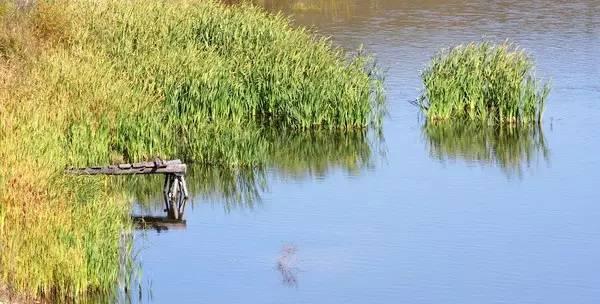 干货:河道景观方案设计全流程详解_15