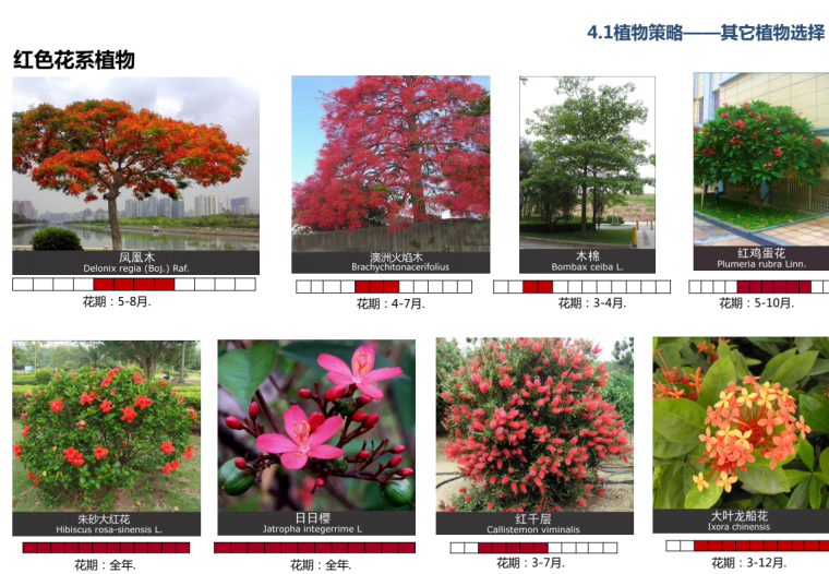 [广州]自然风貌-城市主道路外侧景观方案_14