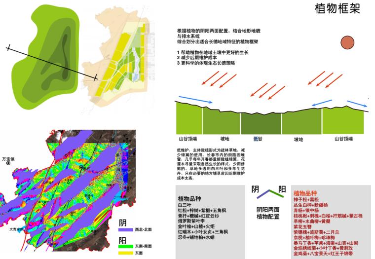 [吉林]生态道路系统及起步区道路景观方案_12