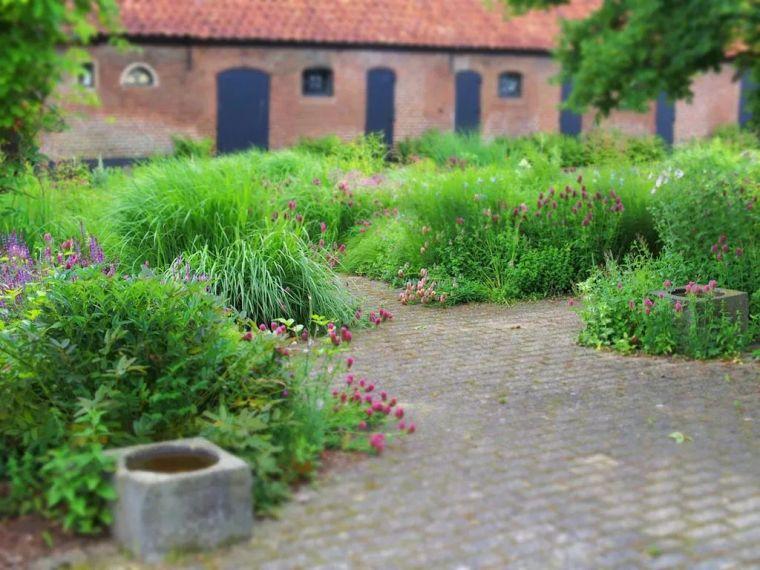 在花园中迷失方向,而不是仅仅穿过它!_21