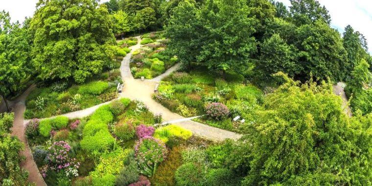 在花园中迷失方向,而不是仅仅穿过它!_74