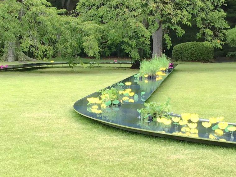 你的植物配置再厉害,又认识几种草坪草呢?_28