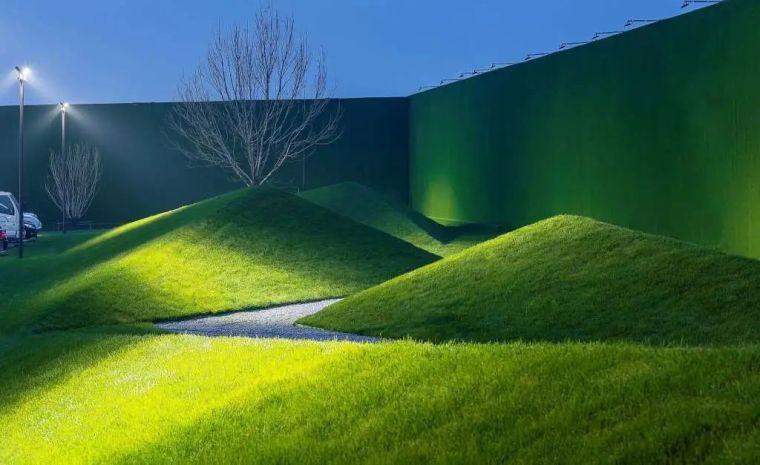 你的植物配置再厉害,又认识几种草坪草呢?_36